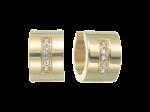 ZES-05-G - Quoins Earrings of stainless steel