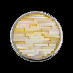 QMON-23-GD - Quoins Mondriaans Choice Yellow/Gold