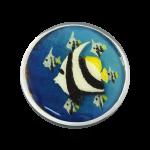 QMOH-31 - Quoins disks: Infinity