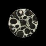 QMNM-22S - Quoins disks: Secrets of the Sea