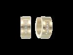 ZES-06-G - Quoins earrings of stainless steel