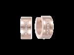 ZES-06-R - Quoins earrings of stainless steel
