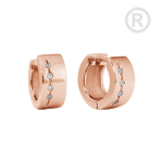ZES-09-R - Quoins earrings of stainless steel
